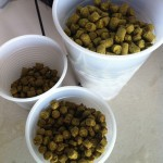 Some of our hops